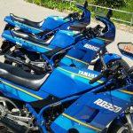 3RD azules